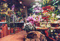 名古屋 花屋